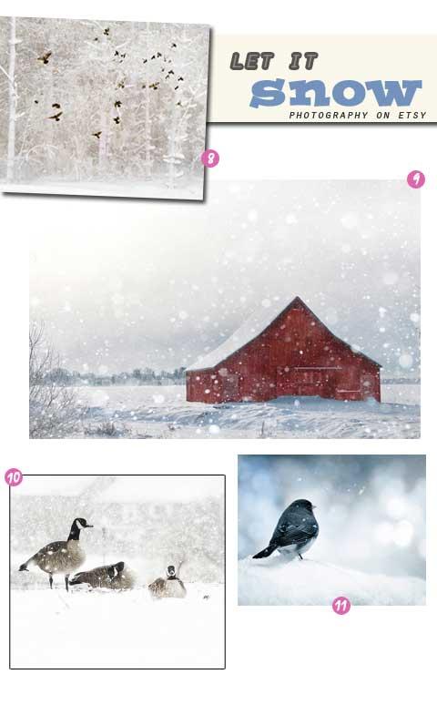 צילומי שלג תצלומי שלג תמונות של שלג
